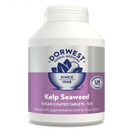 Kelp Seaweed Tablets For Dogs And Cats - 500 Tablets