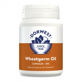 Wheatgerm Oil Capsules For Dogs And Cats