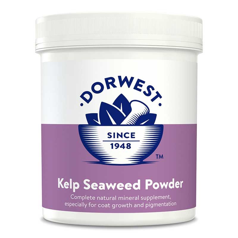Kelp Seaweed Powder For Dogs And Cats