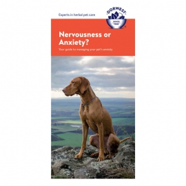 Nervousness & Anxiety Leaflet