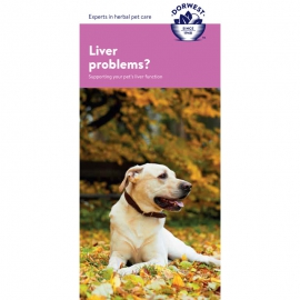 Liver Support Leaflet