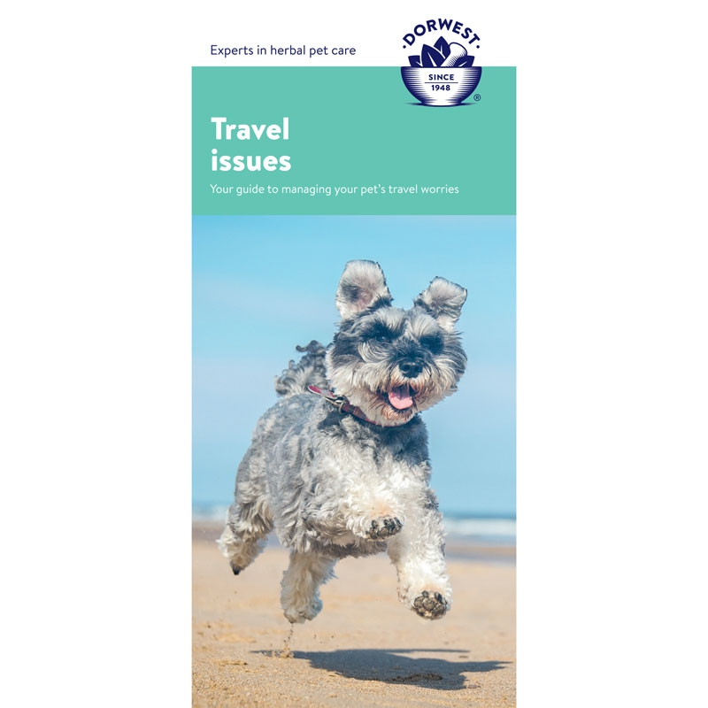 Travel Leaflet