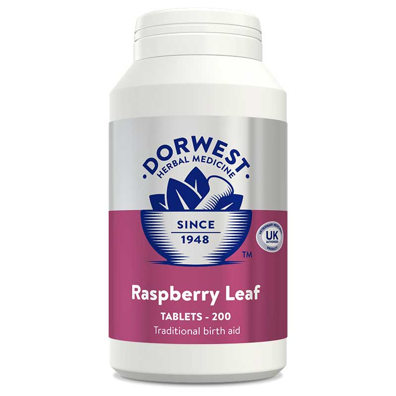 Raspberry Leaf Tablets For Dogs And Cats - 200 Tablets
