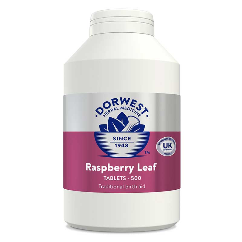 Raspberry Leaf Tablets For Dogs And Cats - 500 Tablets