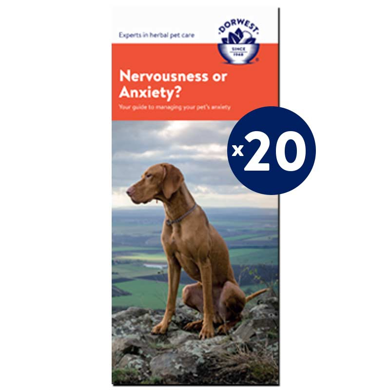 Nervousness & Anxiety Leaflets - 20 Pack