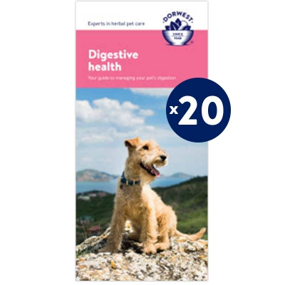 Digestive Leaflets - 20 Pack