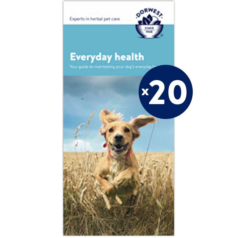 Everyday Health Leaflets - 20 Pack