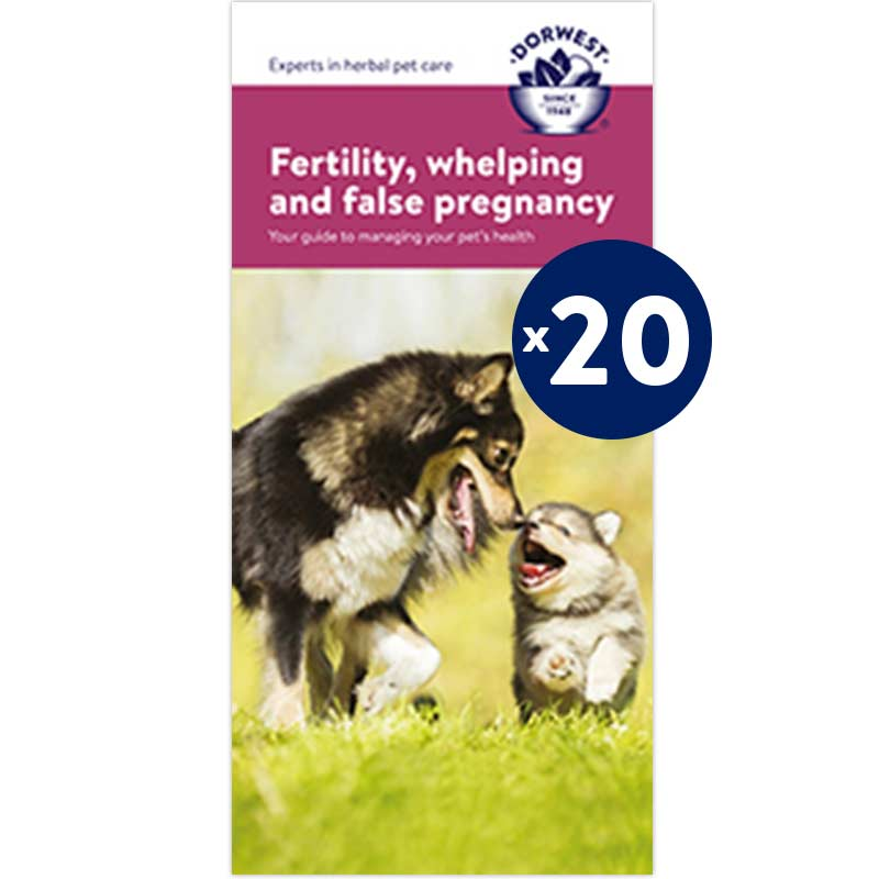 Whelping Leaflets - 20 Pack